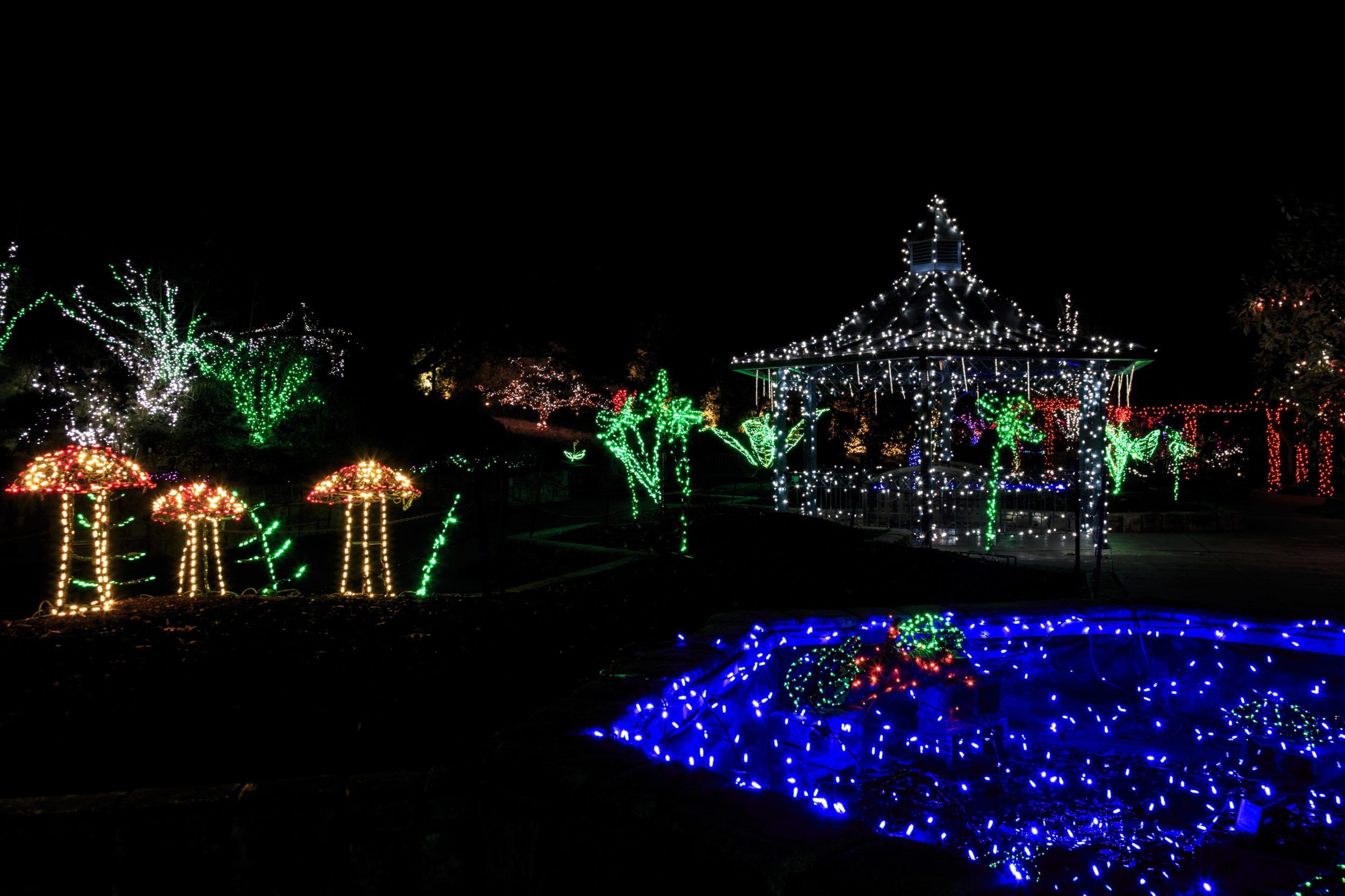 First Timers' Guide to the Garden of Lights at Brookside Gardens ...