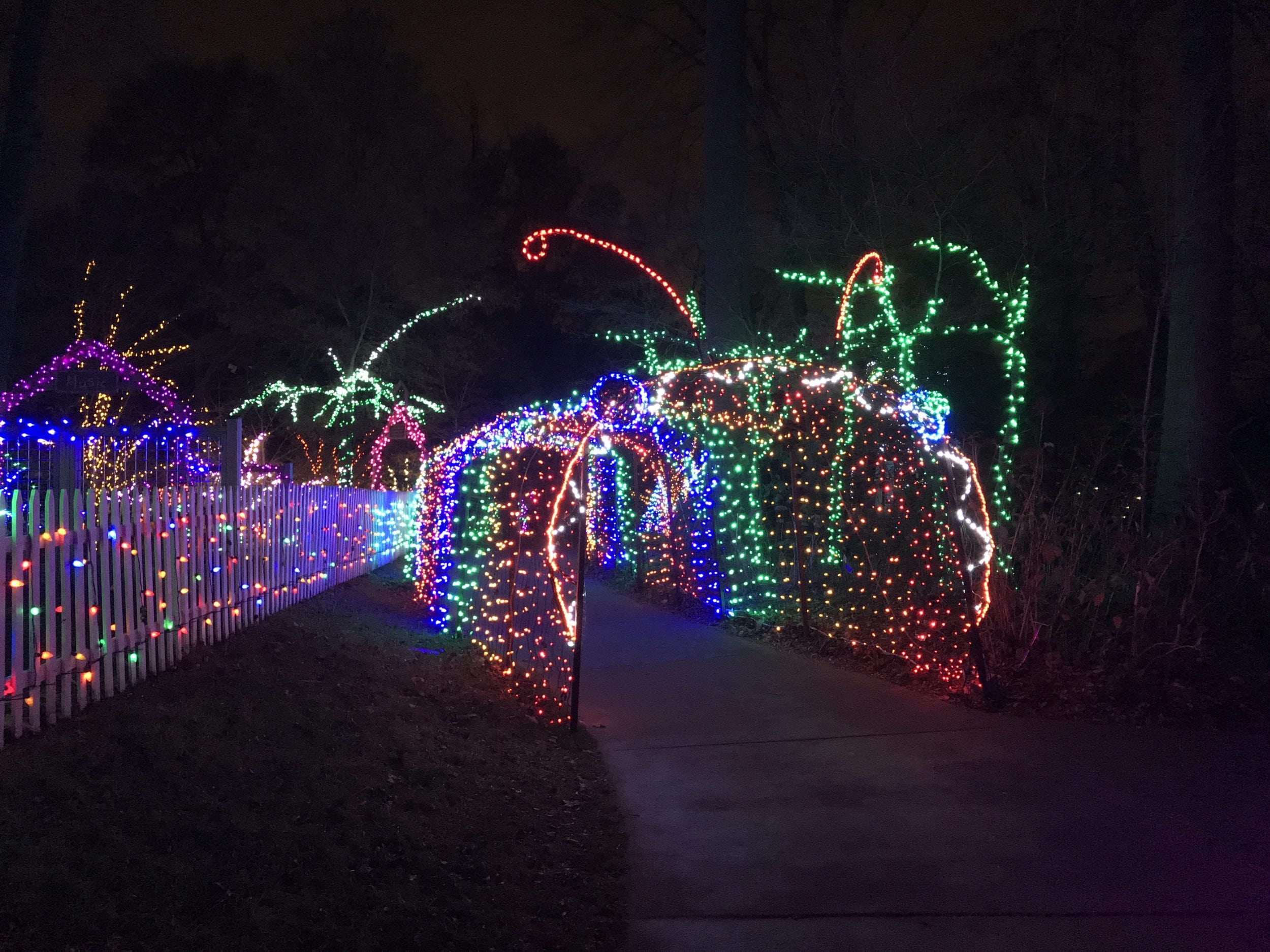 First Timers\' Guide to the Garden of Lights at Brookside Gardens ...
