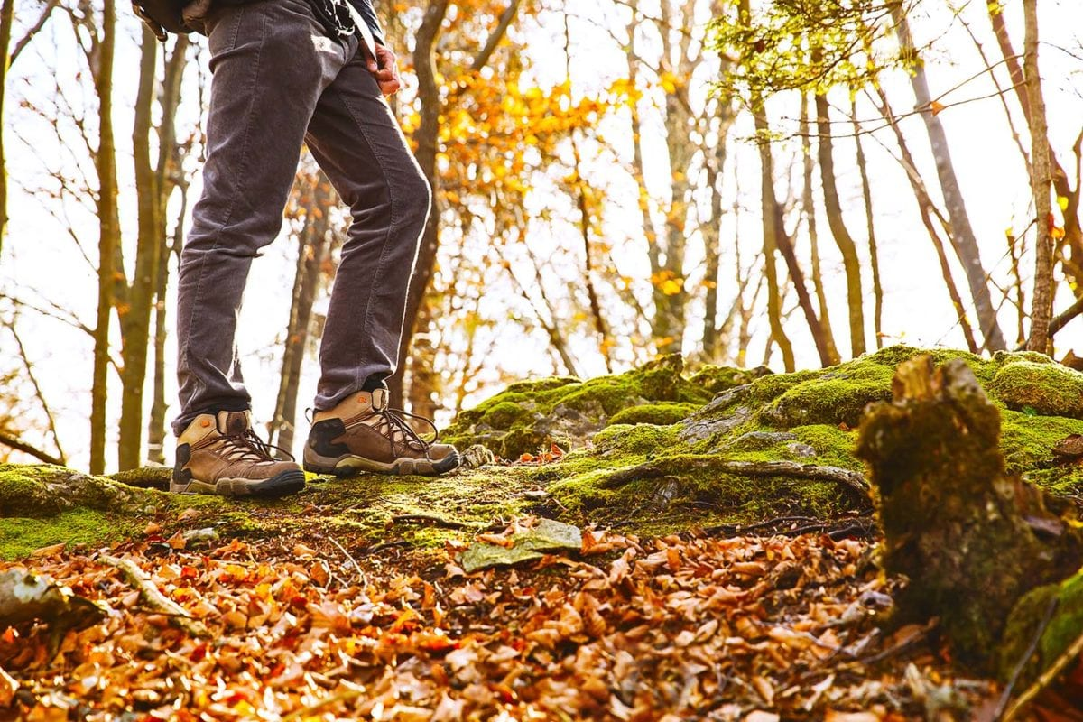 7 Great Hikes to See Fall Foliage Near DC